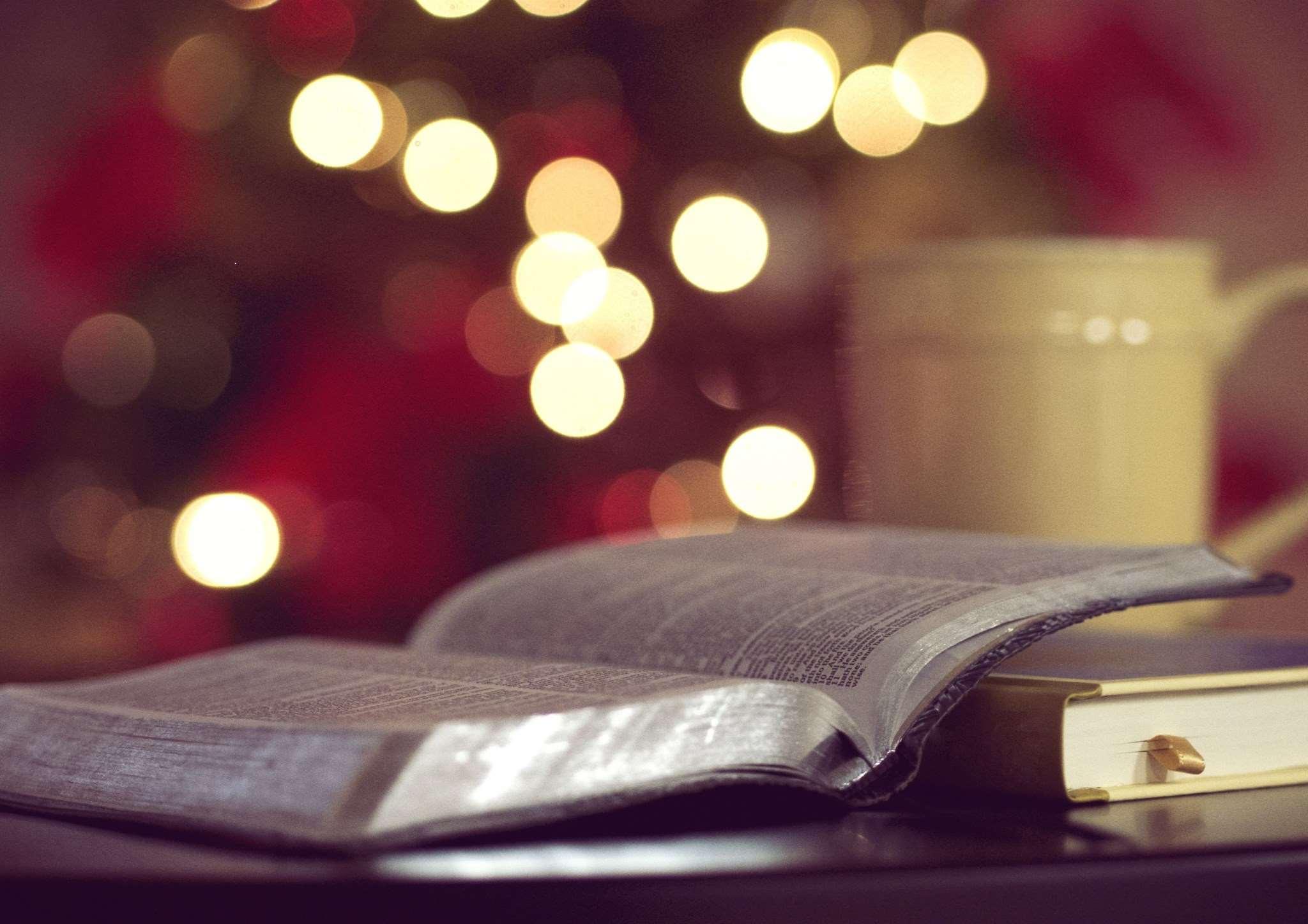 Recomanacions literàries per devorar aquest Nadal!