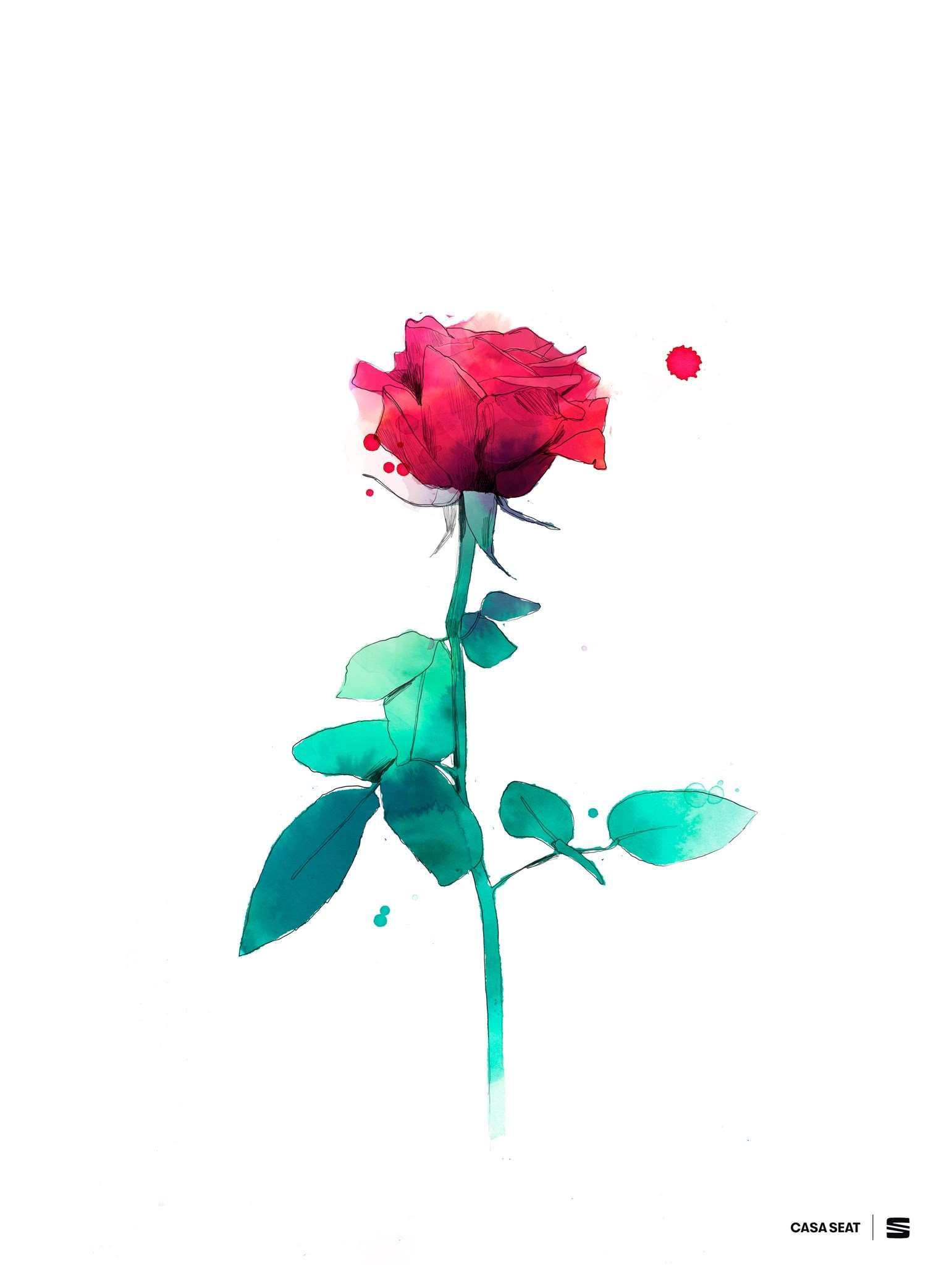 La rosa virtual de Casa Seat