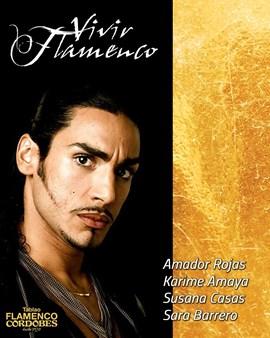 Vivir Flamenco