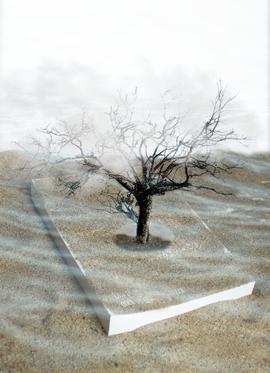 Els camins invisibles