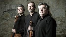 Els Trios nocturns de Schubert