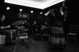 Tablao de Músics | Ciutat Flamenco