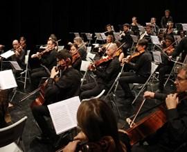 """Camerata Eduard Toldrà. """"Les quatre estacions de Vivaldi"""""""
