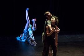 Circula! Tren de creació i formació en dansa
