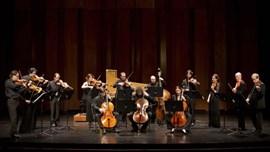 Café Zimmermann: Integral dels Concerts de Brandenburg